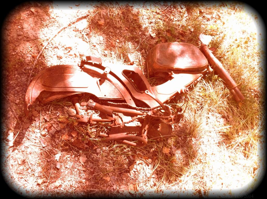 Esquelet de motocicleta