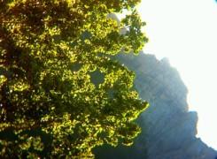 Petit_140817_muntanyes_364