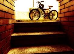 Petit_150418_bicicleta_208