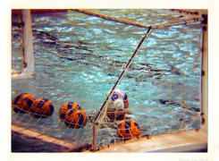Exhibició de Waterpolo
