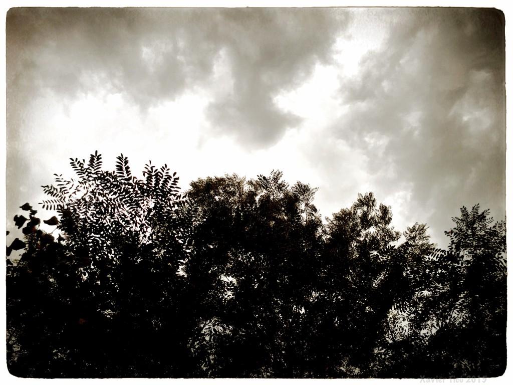 Albada nuvolada